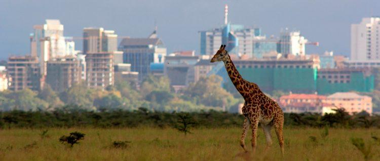 Kenya Nairobi Top Business City In Africa