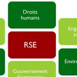La Responsabilité Sociale des Entreprises en Afrique, défi à multiples facettes